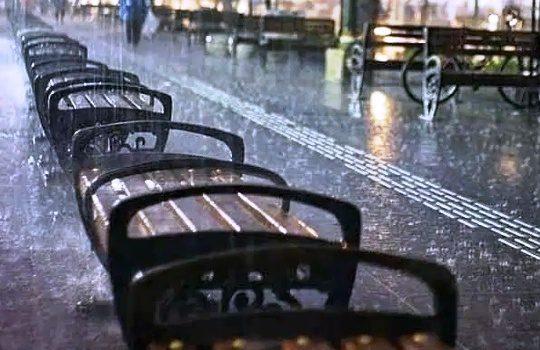 Tips Wisata Ketika Musim Hujan Piknik Tetap Asyik Menyenangkan